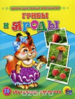 Грибы и ягоды (обучающие к